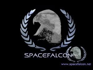 spacefalcon-ohne-www-net